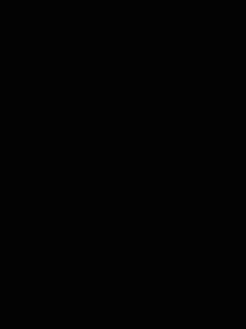 P1210302